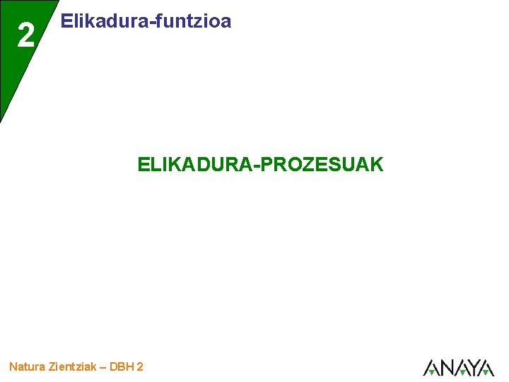 2 Elikadura-funtzioa ELIKADURA-PROZESUAK Natura Zientziak – DBH 2