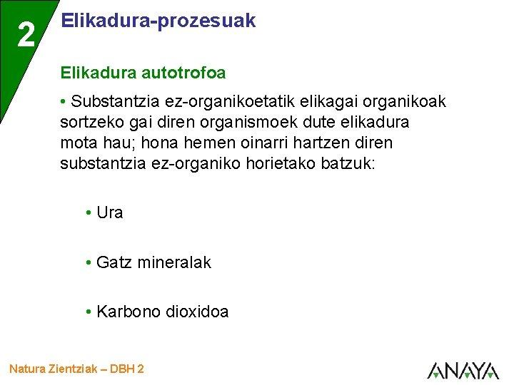 2 Elikadura-prozesuak Elikadura autotrofoa • Substantzia ez-organikoetatik elikagai organikoak sortzeko gai diren organismoek dute