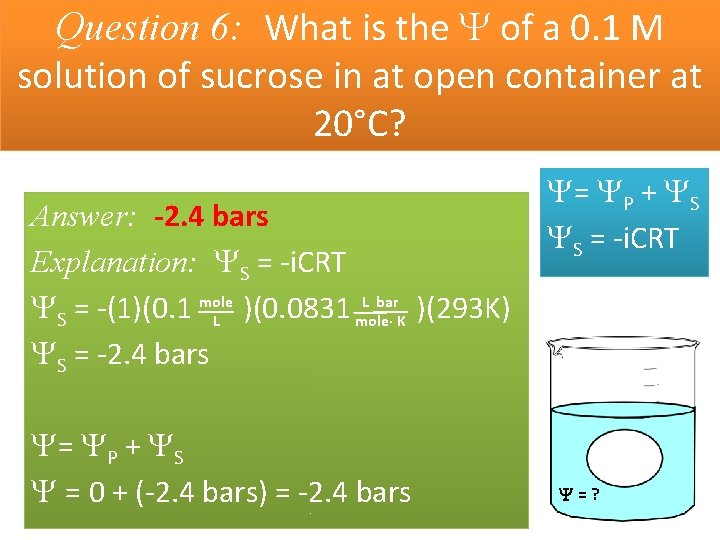 Question 6: What is the of a 0. 1 M solution of sucrose in