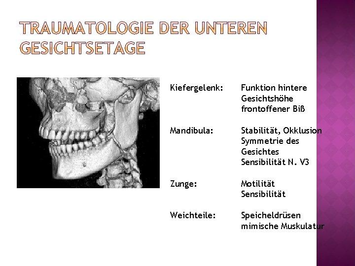 Kiefergelenk: Funktion hintere Gesichtshöhe frontoffener Biß Mandibula: Stabilität, Okklusion Symmetrie des Gesichtes Sensibilität N.