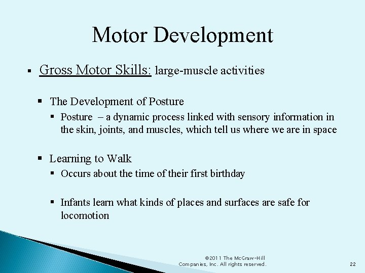 Motor Development Gross Motor Skills: large-muscle activities The Development of Posture – a dynamic