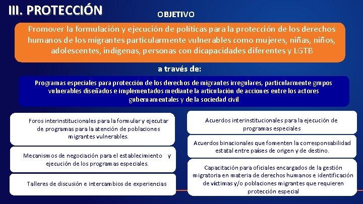 III. PROTECCIÓN OBJETIVO Promover la formulación y ejecución de políticas para la protección de