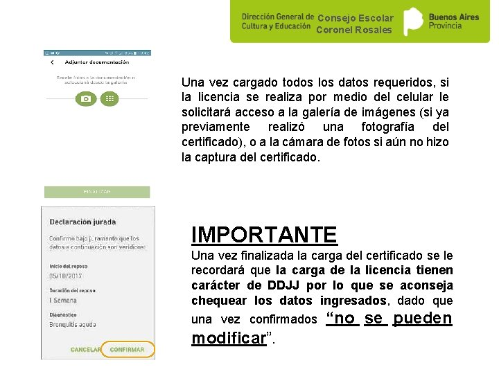 Consejo Escolar Coronel Rosales Una vez cargado todos los datos requeridos, si la licencia