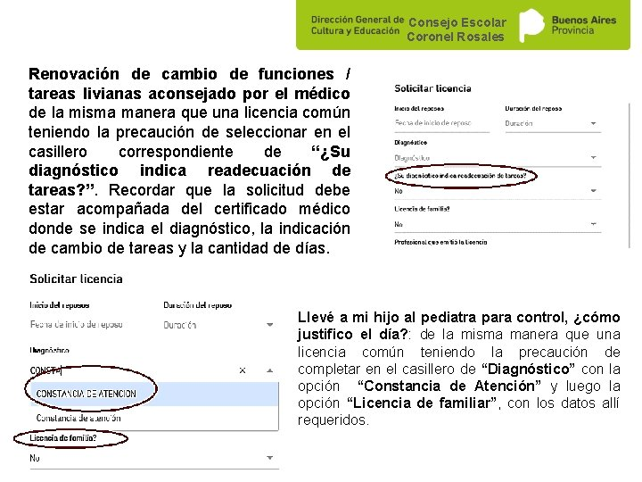 Consejo Escolar Coronel Rosales Renovación de cambio de funciones / tareas livianas aconsejado por