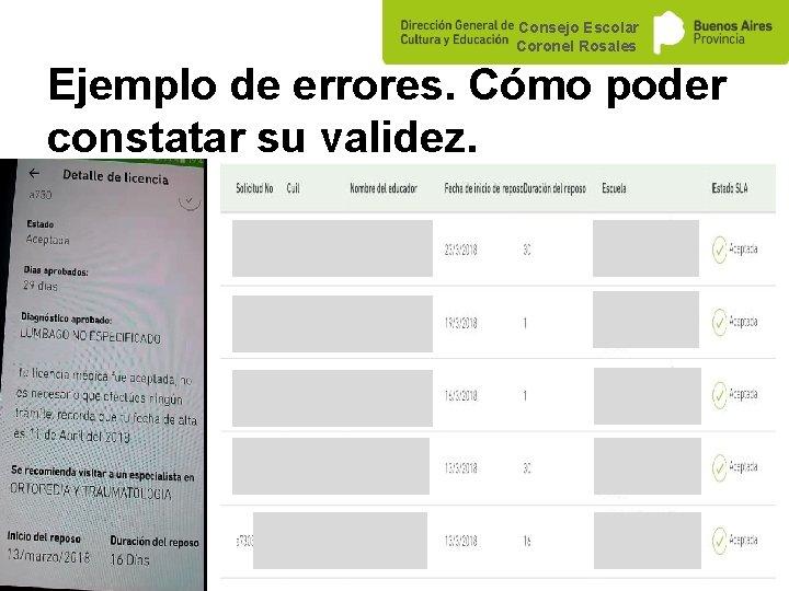 Consejo Escolar Coronel Rosales Ejemplo de errores. Cómo poder constatar su validez.