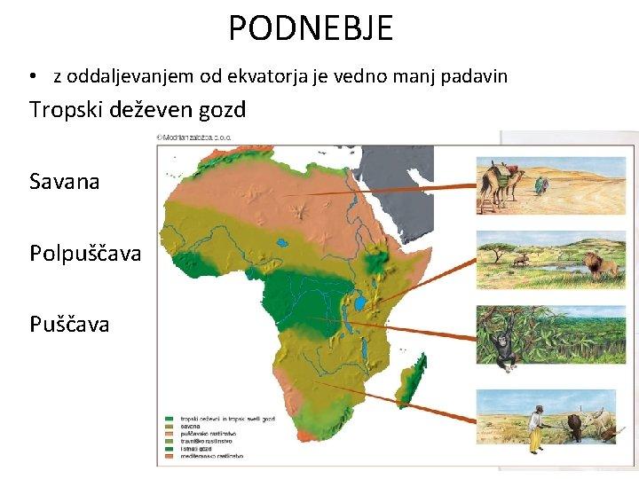 PODNEBJE • z oddaljevanjem od ekvatorja je vedno manj padavin Tropski deževen gozd Savana