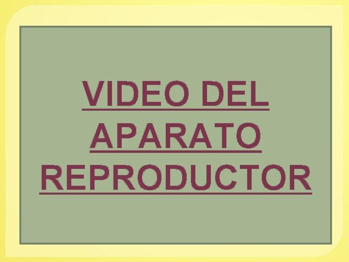 VIDEO DEL APARATO REPRODUCTOR