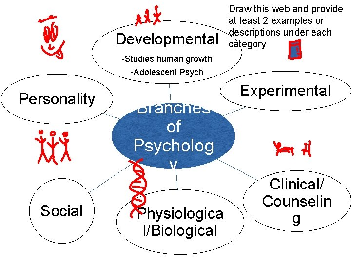 Developmental Draw this web and provide at least 2 examples or descriptions under each