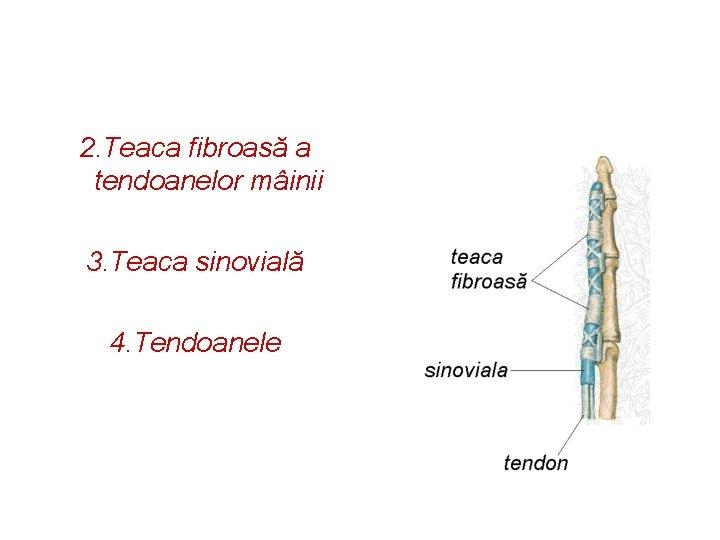 artroza medicamentelor pentru tratamentul articulațiilor șoldului durere în articulațiile mari ale picioarelor