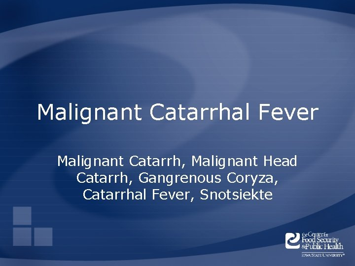 Malignant Catarrhal Fever Malignant Catarrh, Malignant Head Catarrh, Gangrenous Coryza, Catarrhal Fever, Snotsiekte