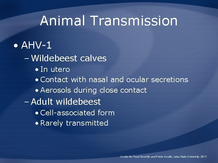 Animal Transmission • AHV-1 – Wildebeest calves • In utero • Contact with nasal