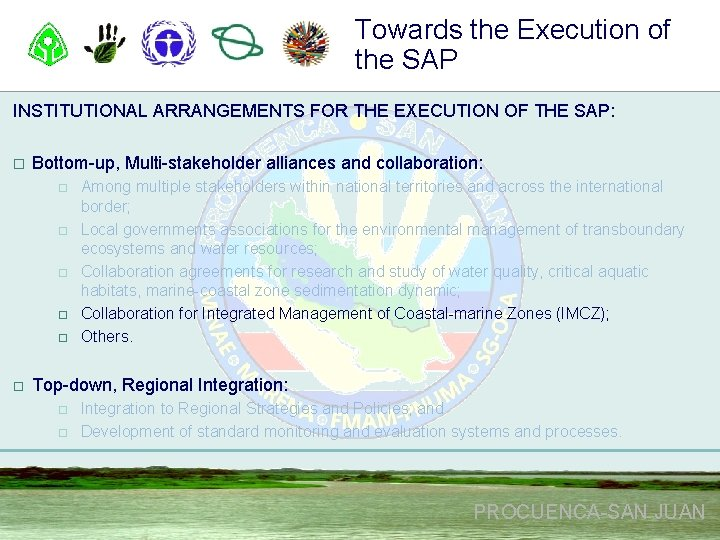 Towards the Execution of the SAP INSTITUTIONAL ARRANGEMENTS FOR THE EXECUTION OF THE SAP: