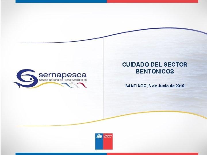 CUIDADO DEL SECTOR BENTONICOS SANTIAGO, 6 de Junio de 2019