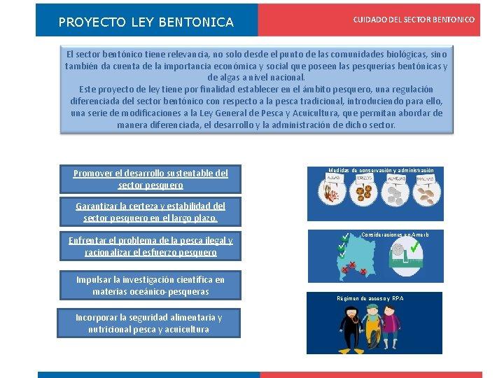 PROYECTO LEY BENTONICA CUIDADO DEL SECTOR BENTONICO Registro Pesquero Artesanal El sector bentónico tiene