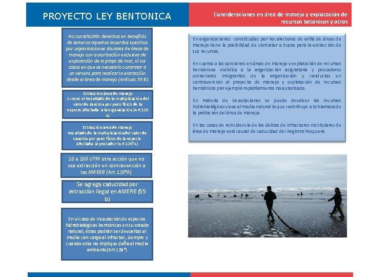PROYECTO LEY BENTONICA No constituirán derechos en beneficio de terceros aquellos acuerdos suscritos por