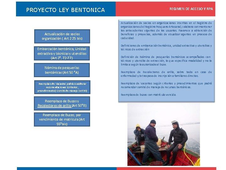 PROYECTO LEY BENTONICA Actualización de socios organización ( Art 2 25 bis) Embarcación bentónica,