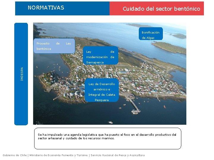 NORMATIVAS Cuidado del sector bentónico Bonificación de Algas Proyecto bentónica de Ley de modernización