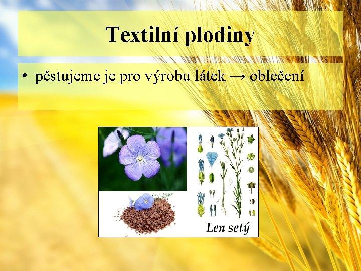 Textilní plodiny • pěstujeme je pro výrobu látek → oblečení