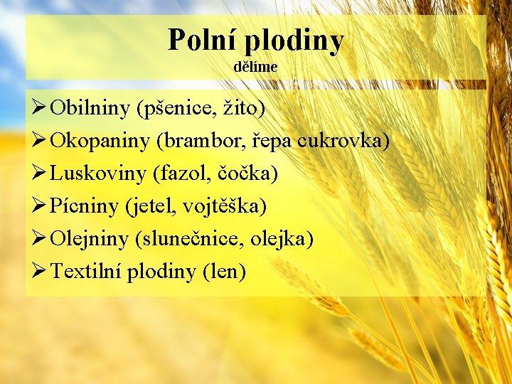 Polní plodiny dělíme Ø Obilniny (pšenice, žito) Ø Okopaniny (brambor, řepa cukrovka) Ø Luskoviny