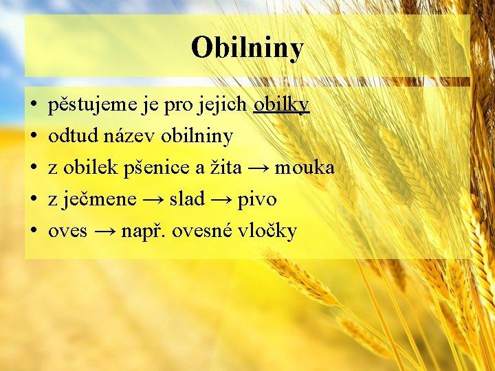 Obilniny • • • pěstujeme je pro jejich obilky odtud název obilniny z obilek