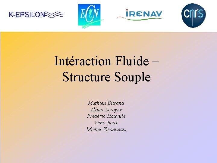 Intéraction Fluide – Structure Souple Mathieu Durand Alban Leroyer Frédéric Hauville Yann Roux Michel