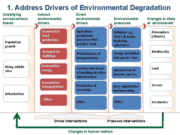 1. Address Drivers of Environmental Degradation Underlying socioeconomic trends Population growth Indirect environmental drivers