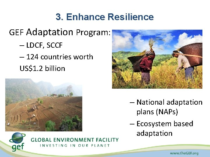 3. Enhance Resilience GEF Adaptation Program: – LDCF, SCCF – 124 countries worth US$1.