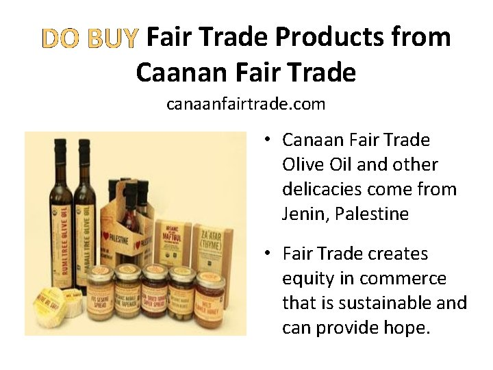 Fair Trade Products from Caanan Fair Trade canaanfairtrade. com • Canaan Fair Trade Olive
