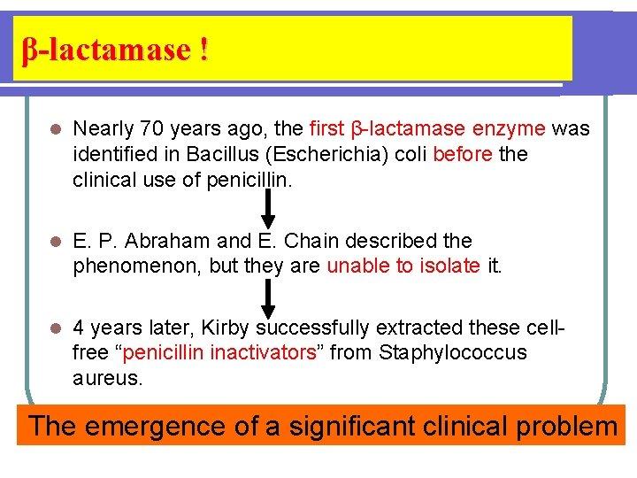 β-lactamase ! l Nearly 70 years ago, the first β-lactamase enzyme was identified in