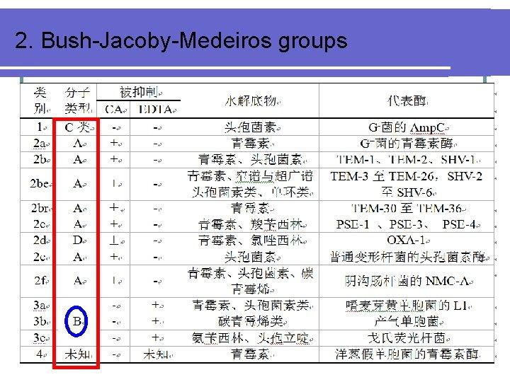 2. Bush-Jacoby-Medeiros groups