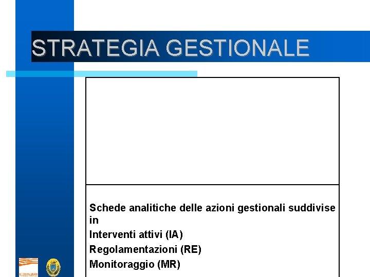 STRATEGIA GESTIONALE Analisi della valenza dello strumento (Iter logico decisionale per la scelta del