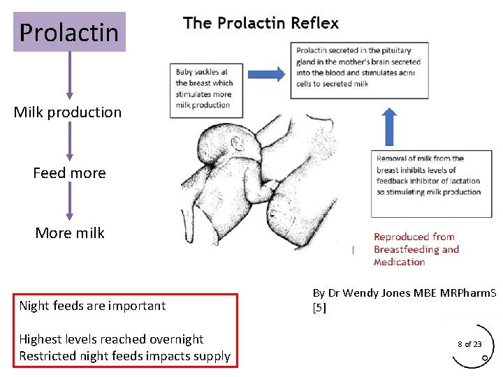 Prolactin Milk production Feed more More milk Night feeds are important Highest levels reached