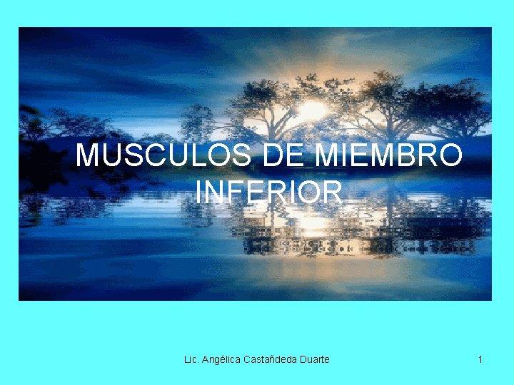 MUSCULOS DE MIEMBRO INFERIOR Lic. Angélica Castañdeda Duarte 1