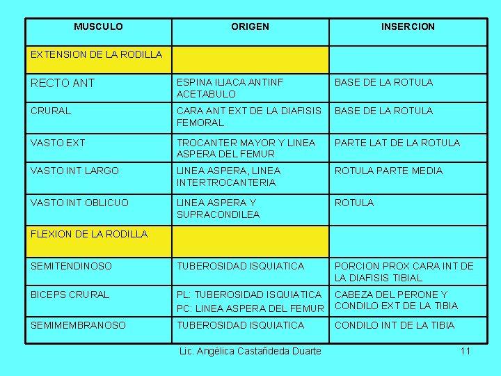 MUSCULO ORIGEN INSERCION EXTENSION DE LA RODILLA RECTO ANT ESPINA ILIACA ANTINF ACETABULO BASE