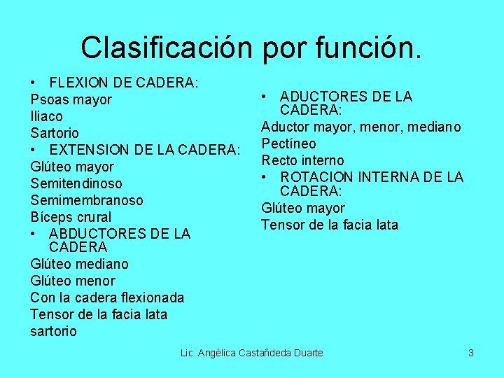 Clasificación por función. • FLEXION DE CADERA: Psoas mayor Iliaco Sartorio • EXTENSION DE