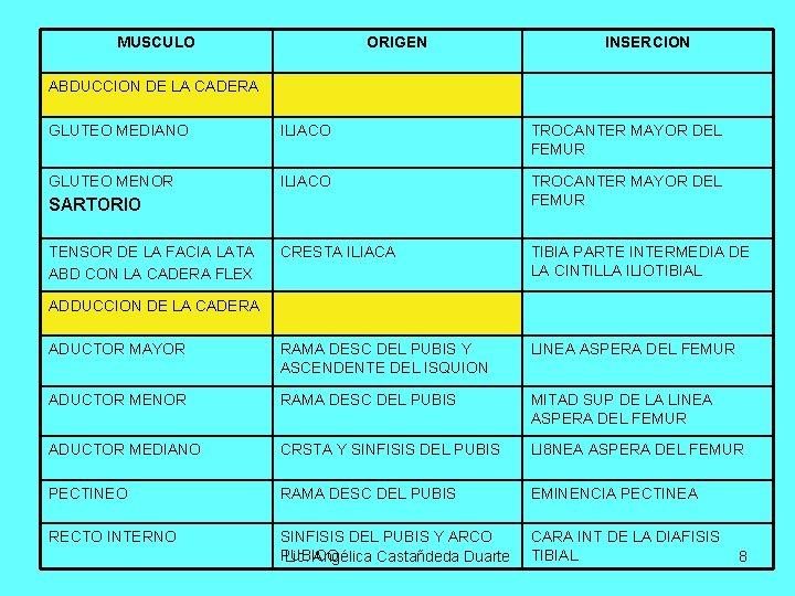 MUSCULO ORIGEN INSERCION ABDUCCION DE LA CADERA GLUTEO MEDIANO ILIACO TROCANTER MAYOR DEL FEMUR