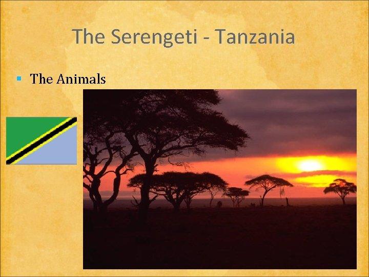 The Serengeti - Tanzania § The Animals