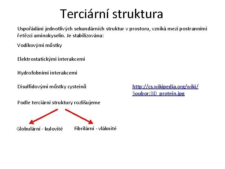 Terciární struktura Uspořádání jednotlivých sekundárních struktur v prostoru, vzniká mezi postranními řetězci aminokyselin. Je