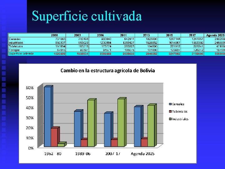 Superficie cultivada