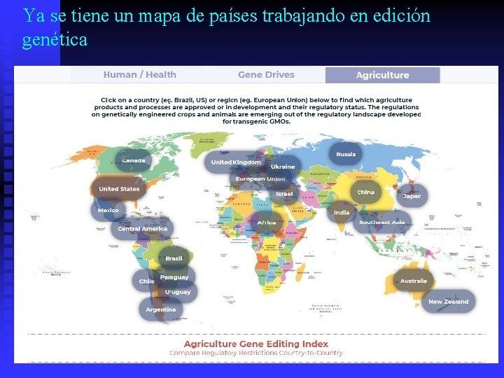 Ya se tiene un mapa de países trabajando en edición genética