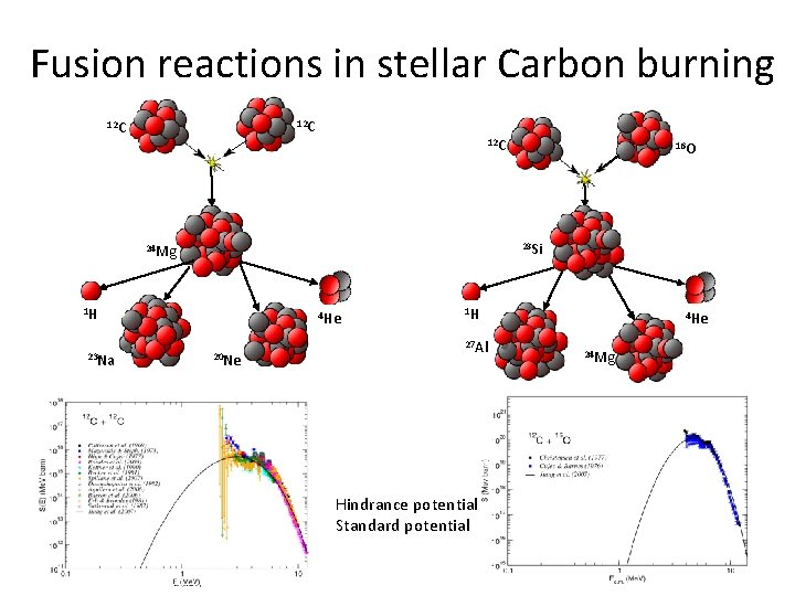 Fusion reactions in stellar Carbon burning 12 C 12 C 28 Si 24 Mg