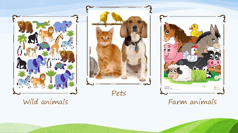 Wild animals Pets Farm animals