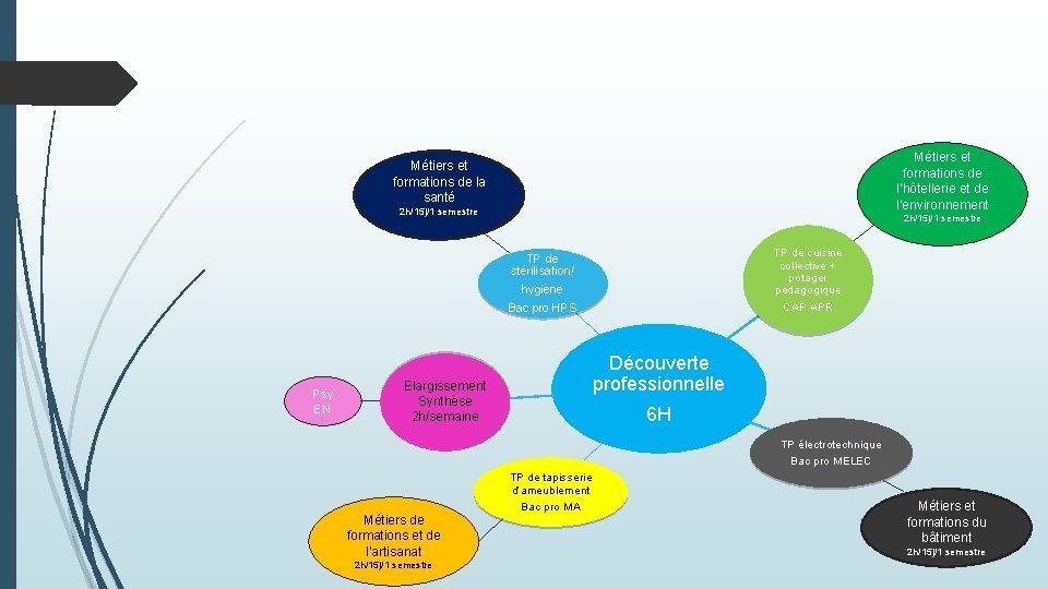 Métiers et formations de l'hôtellerie et de l'environnement Métiers et formations de la santé