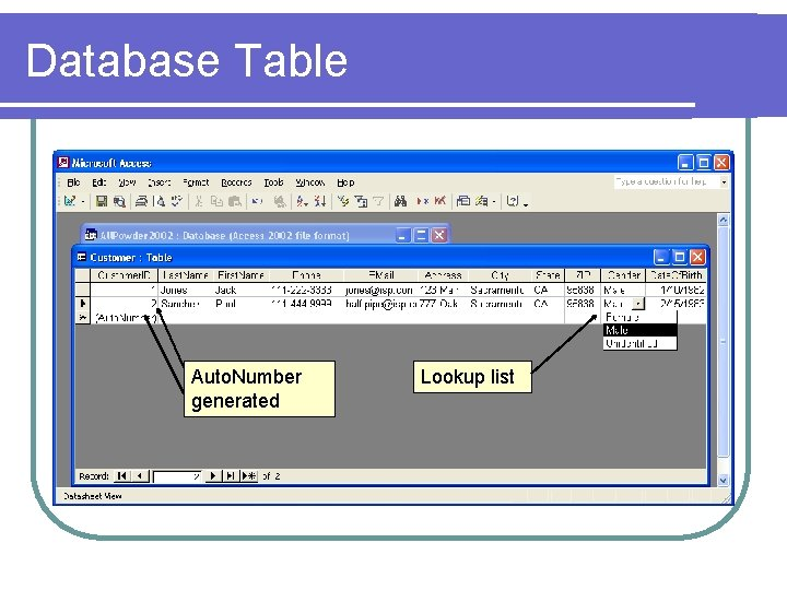 Database Table Auto. Number generated Lookup list