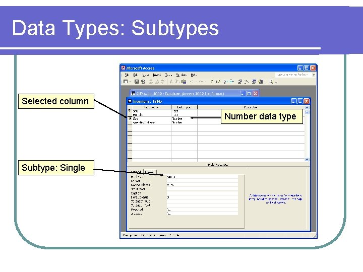 Data Types: Subtypes Selected column Number data type Subtype: Single