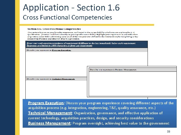 Application - Section 1. 6 Cross Functional Competencies Program Execution: Discuss your program experience