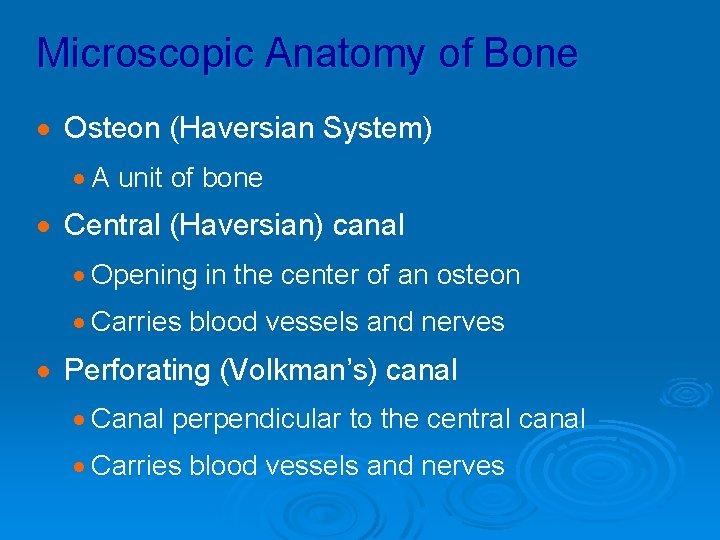 Microscopic Anatomy of Bone · Osteon (Haversian System) · A unit of bone ·