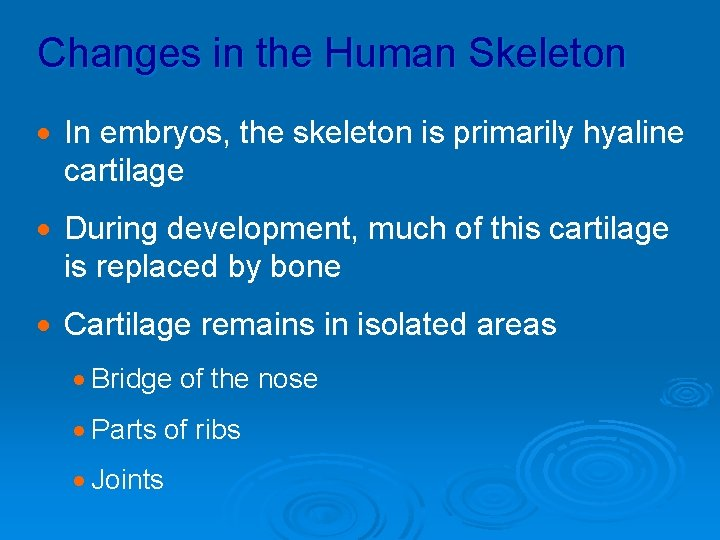Changes in the Human Skeleton · In embryos, the skeleton is primarily hyaline cartilage