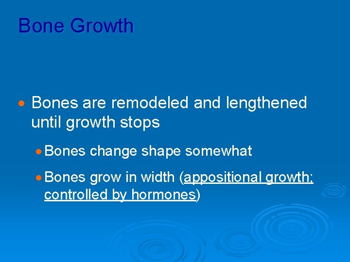 Bone Growth · Bones are remodeled and lengthened until growth stops · Bones change
