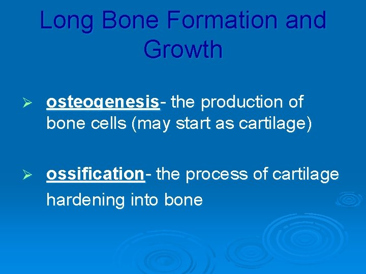 Long Bone Formation and Growth Ø osteogenesis- the production of bone cells (may start